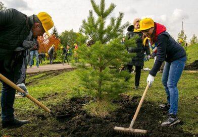 Калужская область среди лидеров экологического рейтинга