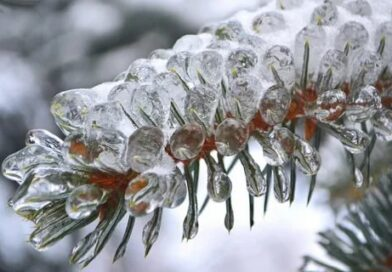 Сегодня  в Калужской области ожидается ледяной дождь