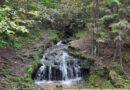 Состояние водопада в Жуковском районе признали благополучным